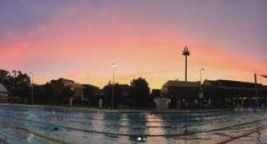 Early-morning-swim